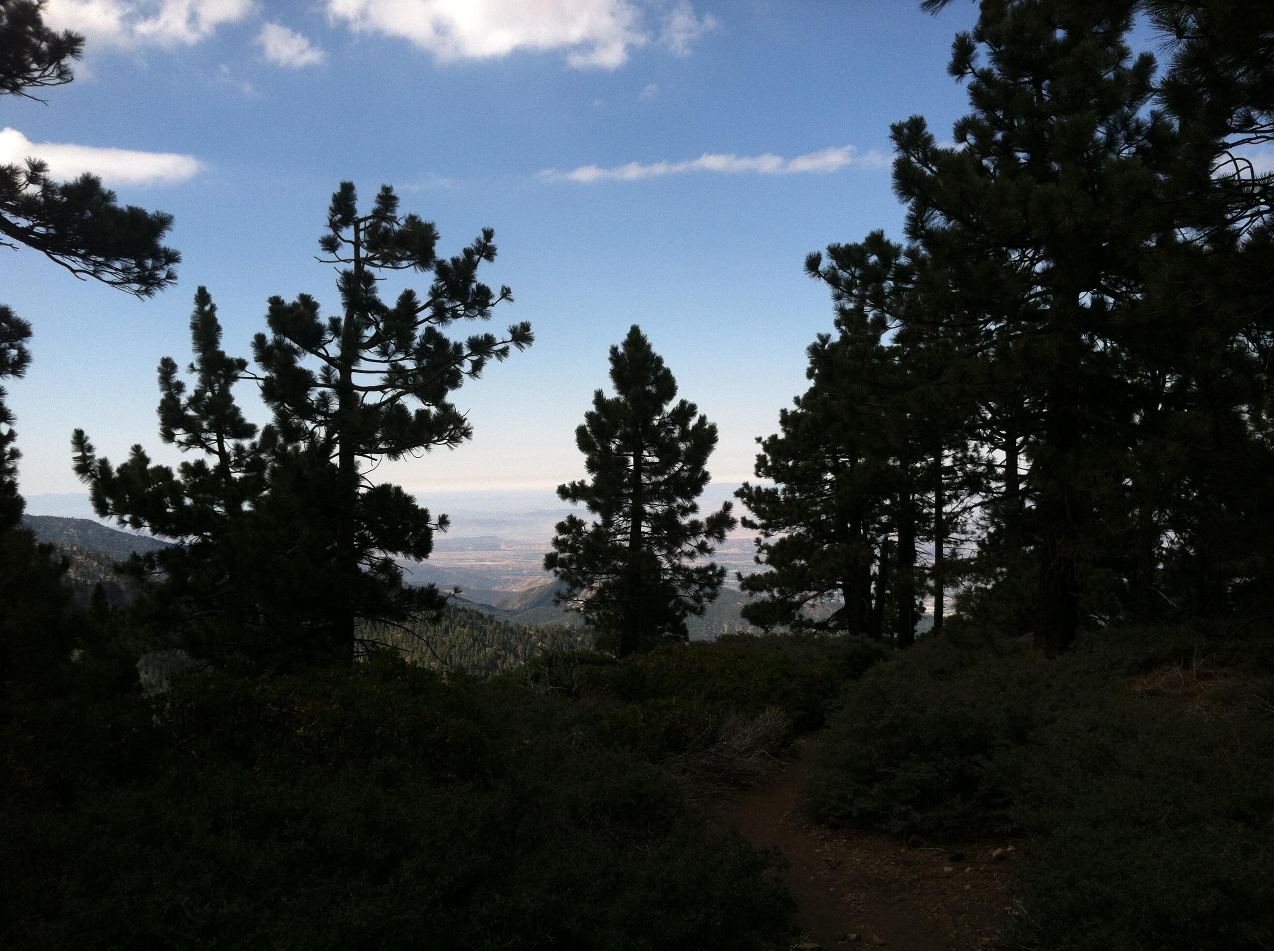 Gorgeous View from halfway point of Mazanita Peak